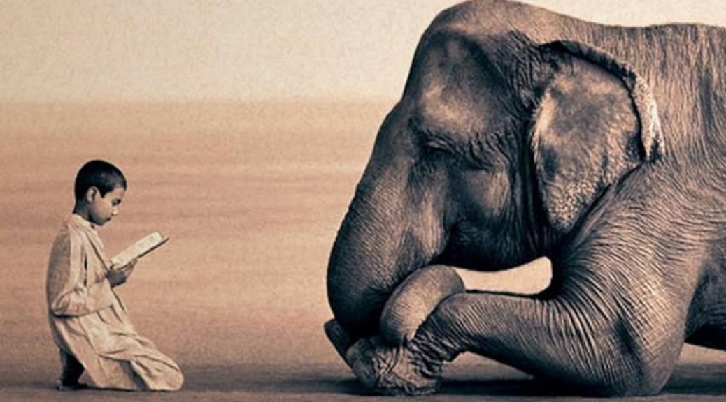 empathy-1038x576
